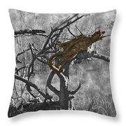 Devil's Tree Throw Pillow