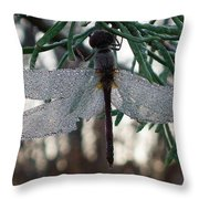 Dew Beaded Wings Throw Pillow