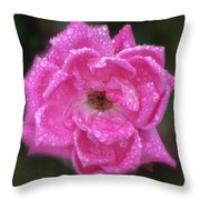Dew Covered Rose Throw Pillow
