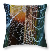 Dew Covered Web Throw Pillow