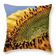 Dew Drop Bee.... Throw Pillow
