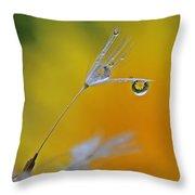 Dew Drop Dandelion Throw Pillow