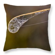 Dew Drop In Throw Pillow by Carolyn Marshall
