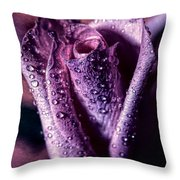 Dew Drops And Purple Rose Throw Pillow