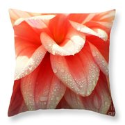 Dew -drops On The Dahlia 2  Throw Pillow