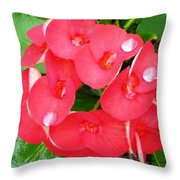 Dew Dropz Throw Pillow