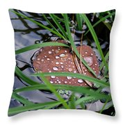 Dew It At The Creek Throw Pillow