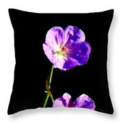 Dew Kissed Morning Throw Pillow