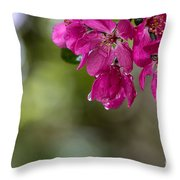Dew On Blossoms Throw Pillow