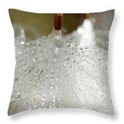 Dew On Milkeed Throw Pillow