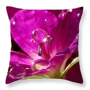 Dew On Pink Throw Pillow