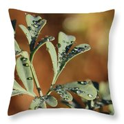 Dew On Rue Throw Pillow
