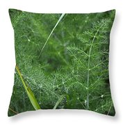 Dew On The Ferns Throw Pillow