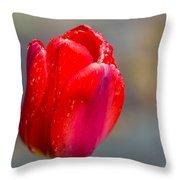 Dew On Tulip Throw Pillow