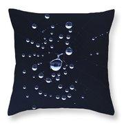 Dewdrops On The Cobweb Throw Pillow
