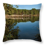 Dewey's Pond Throw Pillow