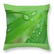 Dewy Blades Throw Pillow