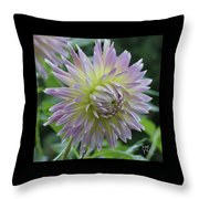 Dewy Dahlia Throw Pillow