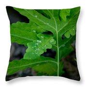Dewy Ferns Throw Pillow