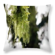 Dewy Moss Throw Pillow