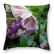 Dewy Pansy 4 Throw Pillow