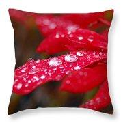 Dewy Petals Throw Pillow