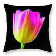 Dewy Pink Yellow Tulip Throw Pillow