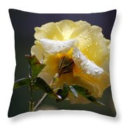 Dewy Yellow Rose 1 Throw Pillow