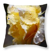 Dewy Yellow Rose 2 Throw Pillow