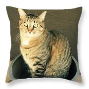 Dexter Is Not Amused Throw Pillow