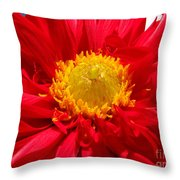 Dhalia Throw Pillow