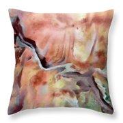 Diagonal Earth Throw Pillow