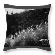 Diagonal Grasses Throw Pillow