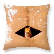 Diamond Kitty Throw Pillow