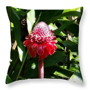 Diamond Red Throw Pillow