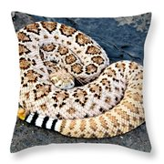 Diamondback Coils Throw Pillow