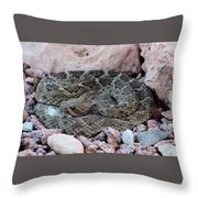 Diamondback Rattlesnake 062414a Throw Pillow