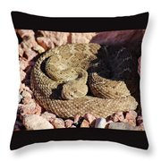 Diamondback Rattlesnake 062414f Throw Pillow