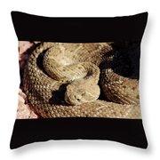 Diamondback Rattlesnake Close-up 062414a Throw Pillow