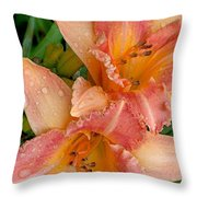 Diamonds And Lilies Watercolor Throw Pillow