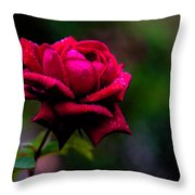 Diamonds On A Rose Throw Pillow