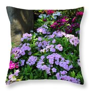 Dianthus Flower Bed Throw Pillow