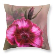 Dianthus Flower IIi Throw Pillow