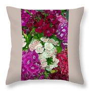 Dianthus Group  Throw Pillow