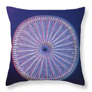 Diatom - Arachnoidiscus Ehrenberi Throw Pillow by Eric V. Grave