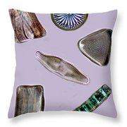 Diatoms Throw Pillow