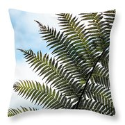 Dicksonia Frond Throw Pillow