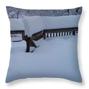 Did It Snow Last Night Throw Pillow