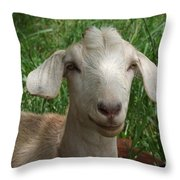Did You Bring Lunch Throw Pillow