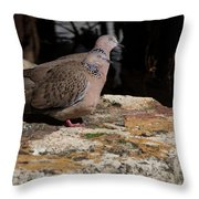 Did You See Something Throw Pillow